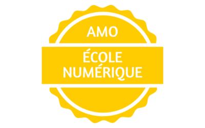 projet d'ecole numerique pour des Ecoles maternelles et primaires, 2020